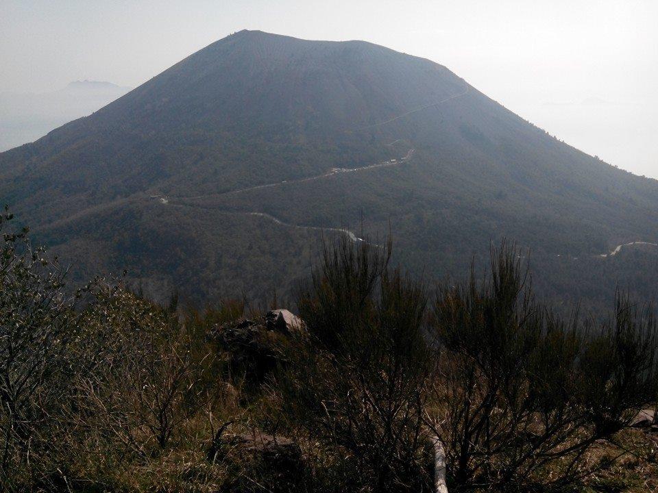 10 - Monte Somma - Nicola Liguoro - vesuvioweb 2016