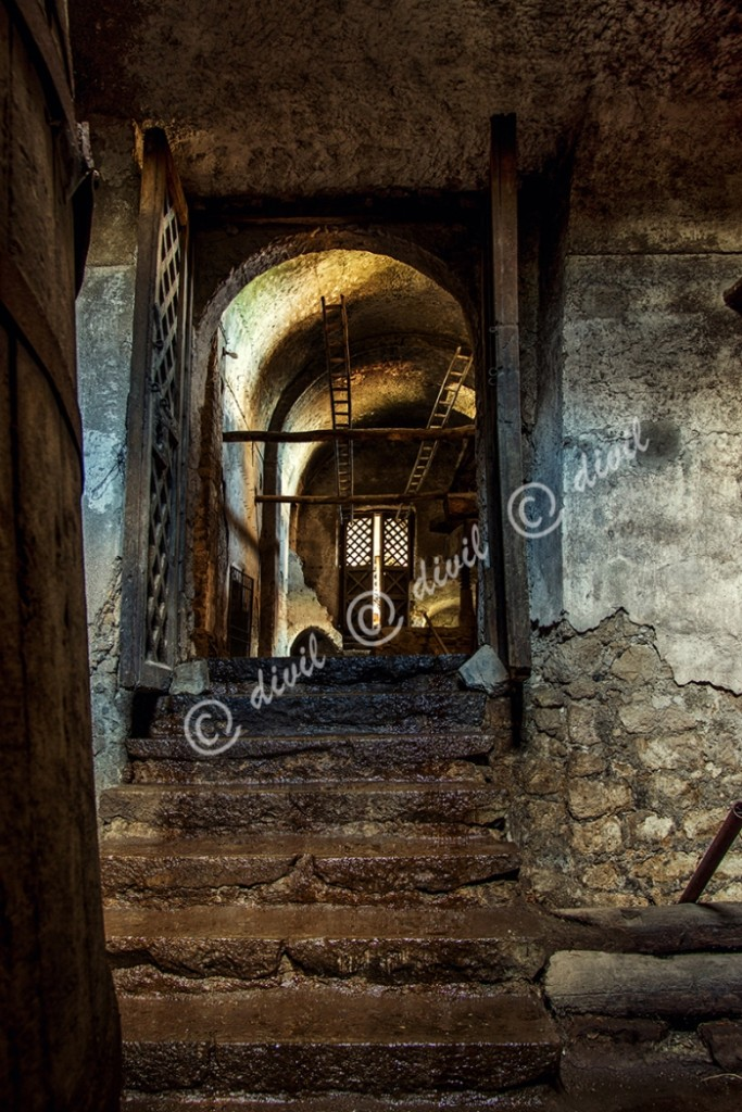 14 Di Lecce Franco - Vesuvioweb 2015