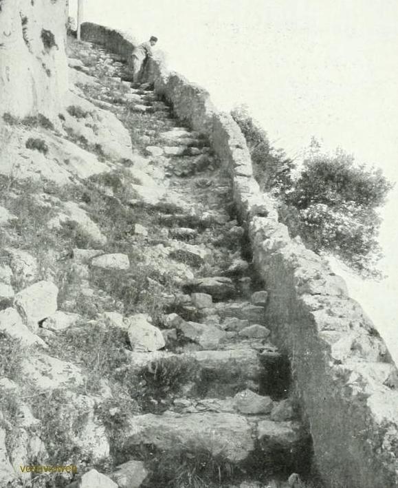 16 CAPRI 1913
