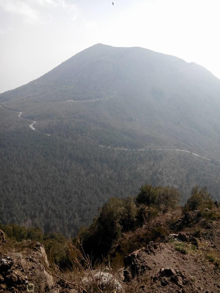 16 - Monte Somma - Nicola Liguoro - vesuvioweb 2016