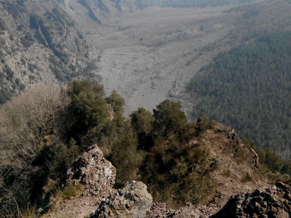 17 - Monte Somma - Nicola Liguoro - vesuvioweb 2016