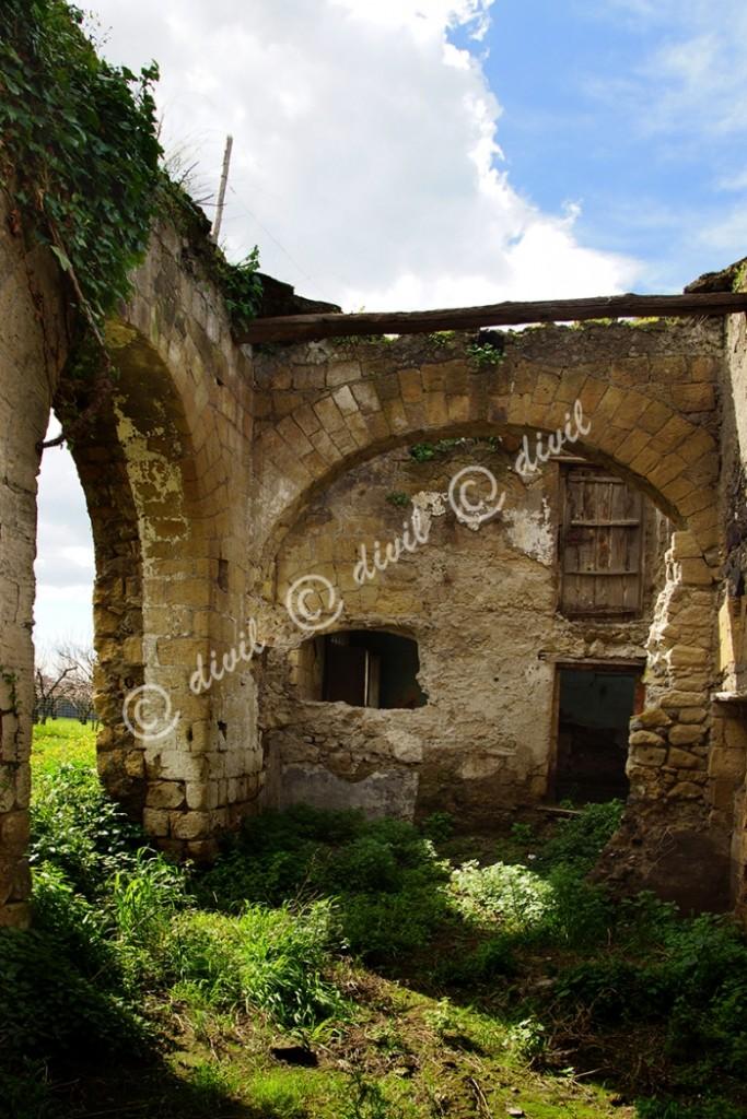 18 Di Lecce Franco - Vesuvioweb 2015