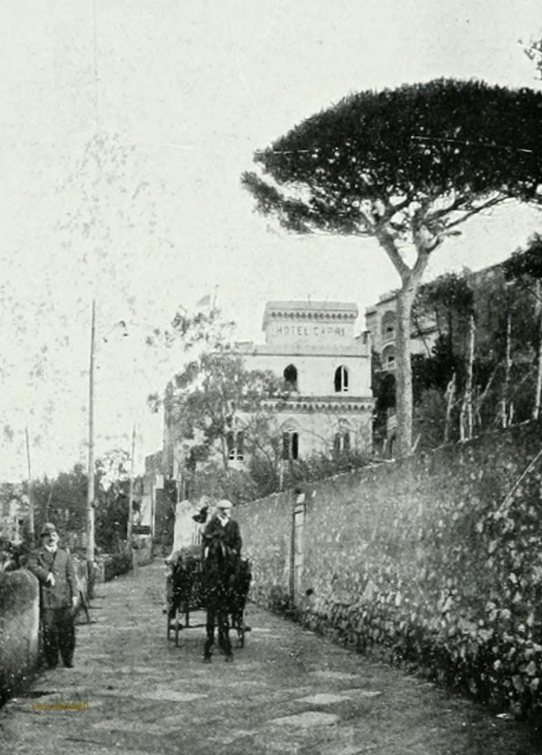 23 CAPRI 1913