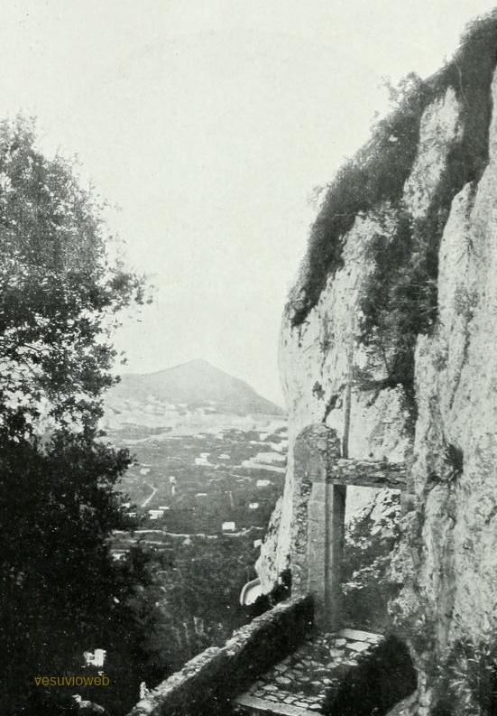 31 CAPRI 1913