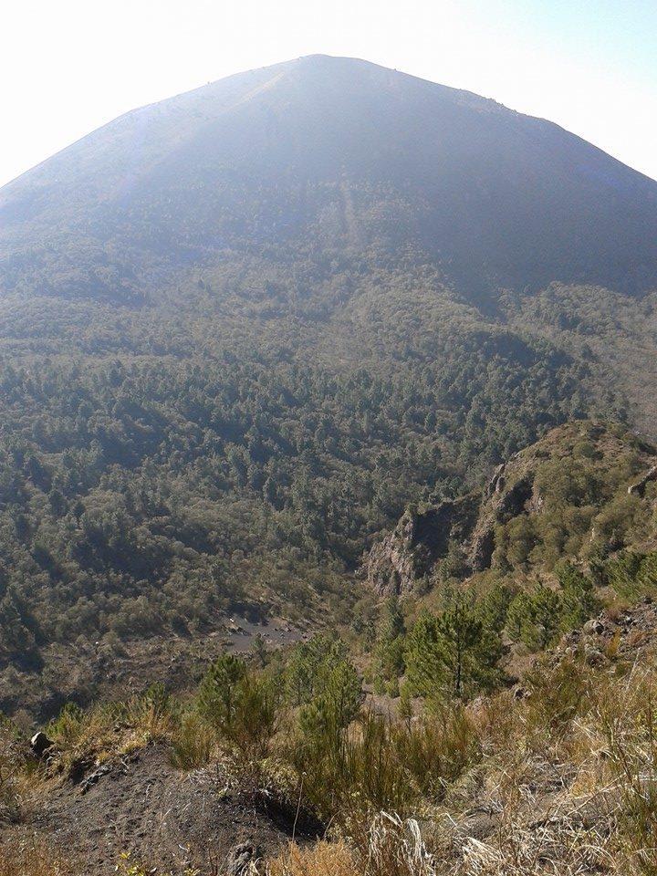 5 - Vesuvio di Nicola Liguoro - vesuvioweb 2016