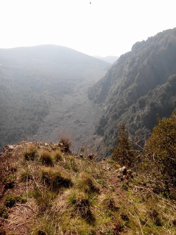 6 - Monte Somma - Nicola Liguoro - vesuvioweb 2016
