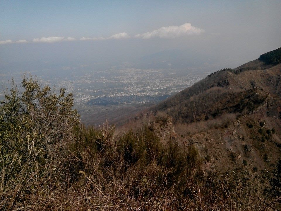 7 - Monte Somma - Nicola Liguoro - vesuvioweb 2016