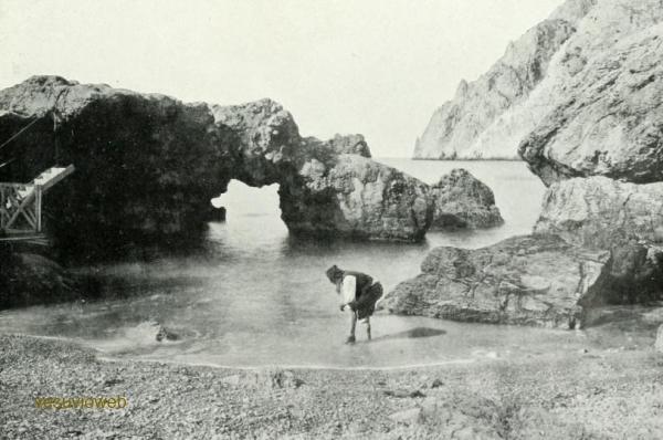 9 CAPRI 1913