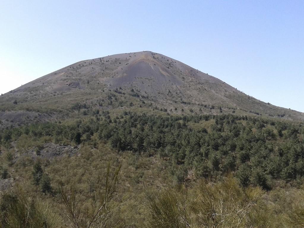 9 - Vesuvio di Nicola Liguoro - vesuvioweb 2016