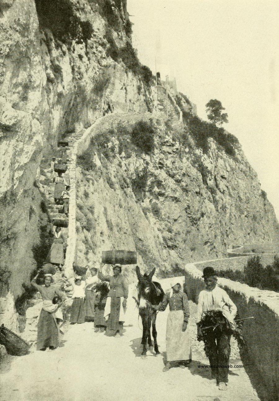 Vesuvio da Le Naturaliste del 1908 - vesuvioweb 2016 - La scala Fenicia tra Capri e Anacapri