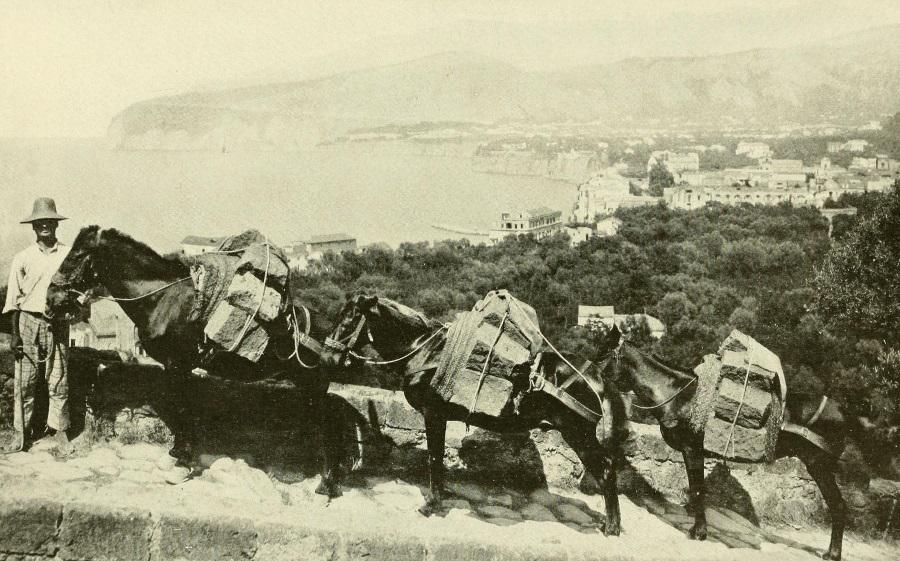 Vesuvio da Le Naturaliste del 1908 - vesuvioweb 2016 - Massalubrense e la Penisola Sorrentina