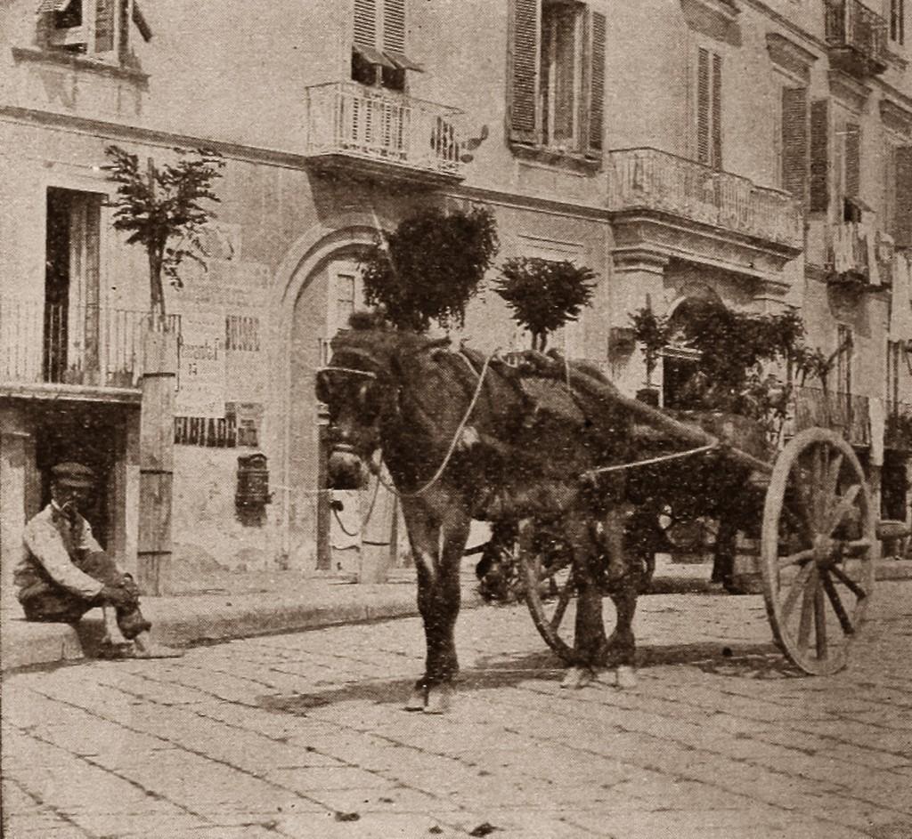 icona carretti1